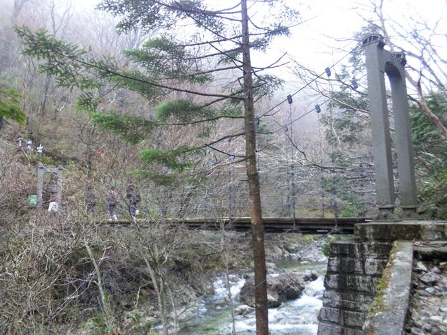 大台ケ原 シオカラ谷吊り橋