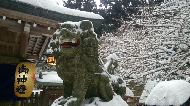 金剛山 葛木神社 こまいぬ