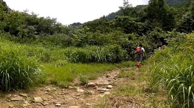 荒島岳 勝原コース 入り口
