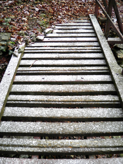 稲村ヶ岳 登山 凍っている階段