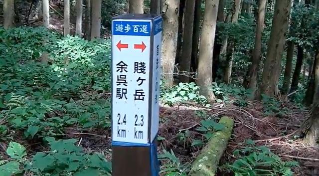 賤ヶ岳 登山道