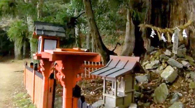 京都愛宕山登山 神社参詣表登山道