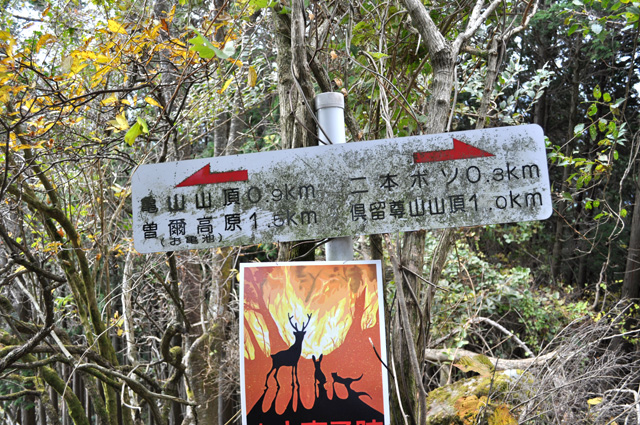 曽爾高原~俱留尊山  山中へ