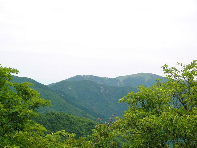 武奈ヶ岳 御殿山コース 打見山を臨む