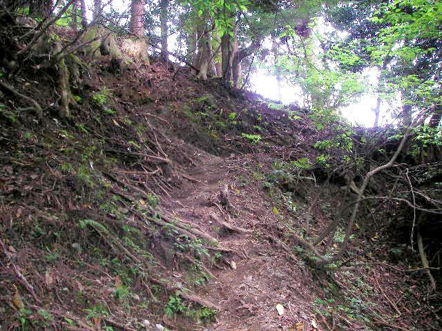 武奈ヶ岳 登山道序盤